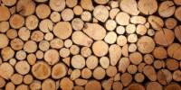 Inquinamento atmosferico, suggerimenti per impianti a biomasse eco-sostenibili