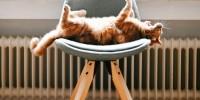 Casa: ecco alcuni consigli per risparmiare sui costi di riscaldamento