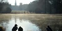 Coronavirus, Milano chiude i parchi pubblici recintati
