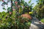 Giardini di Castel Trauttmansdorff: in attesa della riapertura, la natura si risveglia