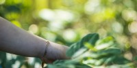 Ass. ambientaliste: salviamo le persone, non le industrie inquinanti