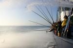 Oceani: solo una pesca sostenibile può farli tornare in salute