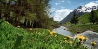 Livigno riparte con una giornata dedicata all'ambiente