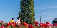 Il parco BAM di Milano pronto per la Fase 2
