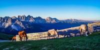 Bressanone sempre più il paradiso per gli amanti della bici