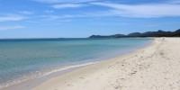 WWF: la disinfezione delle spiagge può creare gravi problemi ambientali