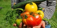 Fase 2: via libera alla coltivazione degli orti per 1,2 mln di italiani