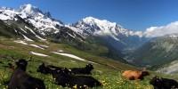 'L'estate del gigante': alla scoperta del Monte Bianco con Enrico Brizzi