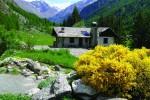 Pronto per la riapertura il Giardino Botanico Alpino Paradisia