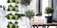 Poty, l'orto verticale che permette di coltivare il proprio orto sul balcone