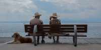 Gli italiani in vacanza con i propri amici a 4 zampe
