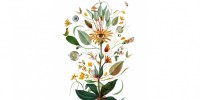Herbarium vagans, al via un nuovo appuntamento tra botanica e arte