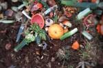 Corepla: triplicano le bioplastiche compostabili nella raccolta dell'organico