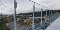 Il ponte di Genova è 'bird-friendly': barriere trasparenti difenderanno la migrazione
