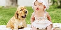 Alcuni consigli su come comunicare al nostro cane l'arrivo di un bebè