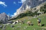 Marmolada-Move To The Top: escursioni per scoprire la Regina delle Dolomiti