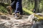 Escursioni nella natura a Lana e dintorni: il fascino di Monte Luco