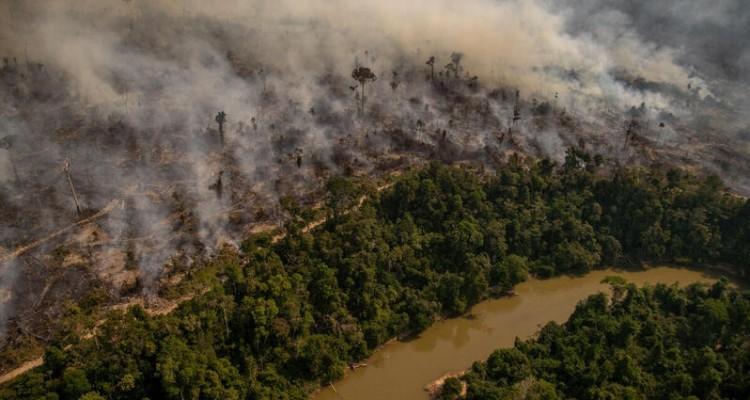 Greenpeace: l'Amazzonia continua a bruciare