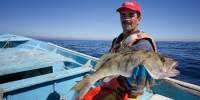 Marine Stewardship Council rileva progressi nella pesca sostenibile