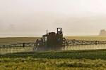 Coldiretti: raddoppia l'import di grano canadese (+96%)