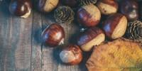 Il 'Mal d'autunno'  si combatte con le vitamine e l'energia di cachi e castagne