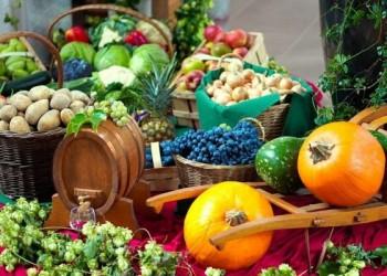 il Covid spinge gli italiani: 1 su 4 ora acquista più prodotti sostenibili o ecofriendly