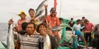 MSC: 1 milione di sterline per la pesca sostenibile