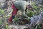 Tempesta Vaia, piantumati 3.000 alberi a Predazzo (TN)