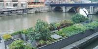 """WWF: nel 2050 in Italia rischiamo di avere altre 2,5 """"Rome"""" di cemento"""