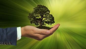 Superbonus 110%: online sito ENEA per inviare documentazione