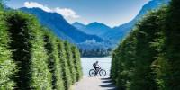 Il Bonus Bici torna dal 9 novembre