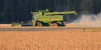 Coldiretti: record prezzi delle materie prima, dalla soia al mais