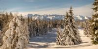 Aprica pronta per la stagione invernale: dalle ciaspole al fondo, la montagna non è solo sci in pista!