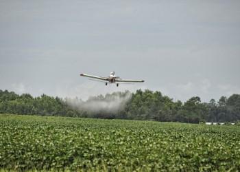 Legambiente: residui di pesticidi arrivano nel piatto