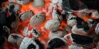 WWF: stop alla carbonella illegale, causa di deforestazione