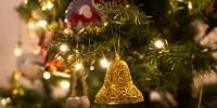 Natale: in 3,5 mln di case si accende l'albero vero