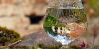 UE: nuove regole per migliorare la qualità dell'acqua del rubinetto e ridurre i rifiuti di plastica