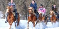 Sulla slitta trainata da cavalli con Gallo Rosso