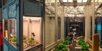 ENEA: sistemi di illuminazione OLED per l'agricoltura del futuro