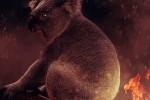 Australia, WWF: tecnologia in campo per una rinascita green