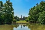 Milano: nuove norme per la salvaguardia degli alberi in città