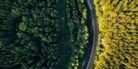 Westport Fuel Systems con Scania per un progetto di ricerca sui motori a idrogeno a iniezione diretta
