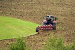 Nel 2020 agricoltura italiana prima in UE
