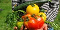 Zone rosse e arancioni: ok agli spostamenti per 1,2 mln contadini per hobby