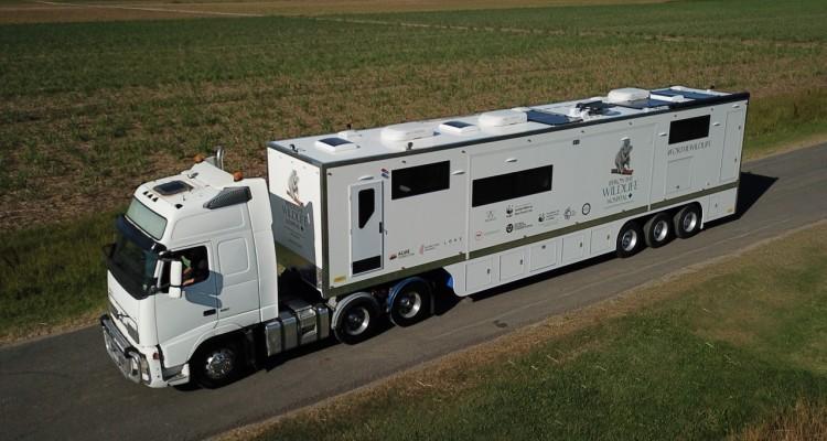 WWF: in Australia il più grande ospedale mobile per la fauna selvatica