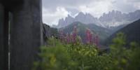 Le antiche leggende dell'Alto Adige: fantasmi e giganti che giocano a bowling