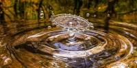 Giornata mondiale dell'acqua: Legambiente presenta il dossier 'Acque in rete'