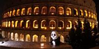 WWF: 192 Paesi del mondo hanno spento le luci per Earth Hour