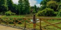 Milano, progetto Forestami: obiettivo 3mln di alberi entro il 2030