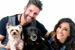 ZAMPYlife, l'App per tutti gli amanti degli animali